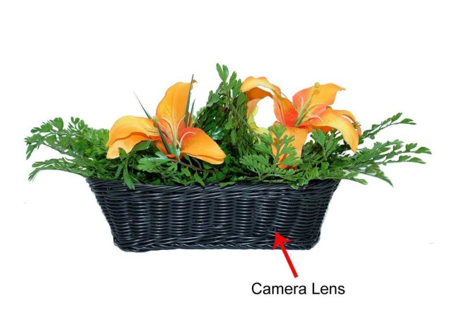 Micro camera disfarçada em um vaso de planta
